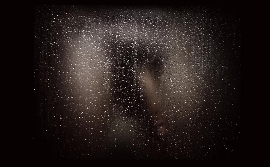 Shower Curtain, 2004